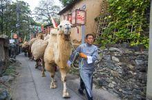 南窖村,100年前的记忆,祖辈曾经这样生活。 南窖村是北京房山区的中心,原本我也不知道有这样一个村庄