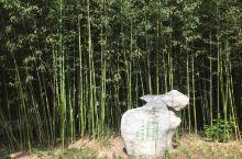"""江南竹韵,位于紫竹院公园长河北岸,在""""清凉罨秀""""和""""聆涛亭""""之间,占地3000平方米,低于周围地表3"""