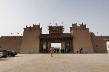 胡杨季喀什巴楚县,5块钱公交离县城18公里