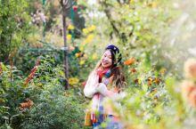 法国莫奈花园 印象派画家莫奈的桃花源  亮点特色: 从巴黎市区出发往西走,和梵高暂别,去看看印象派大