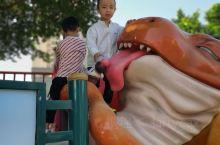 恐龙乐园的可爱小恐龙