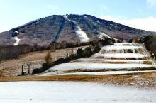第三下雪了,滑雪场还要晚些时候开,说是日本最好的滑雪场,春天雪墙能达8米之高,昨天跟着自然学校老师去