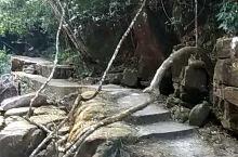 八寨沟  。 经过八寨沟里的仙女池,灵龟池,将军潭等景点,来到了这里天然石井。也许是大家都用上了自来