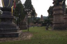 龙门石窟艺术是中国宗教艺术的瑰宝,到龙门石窟了解佛教在中国的传播 少林寺塔林是高僧圆寂之后被安葬的地