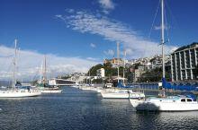 新西兰惠灵顿,景色宜人,不过风多!