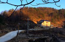 室内温度依旧很低,一早起床便出门四周走走。看到地里的庄稼都打上霜,菜叶上都结满了冰凌。 当太阳出来的