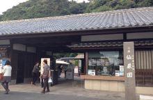 仙岩園 1600门票,网上提前预定 包含进岛津忠义的家参观和喝抹茶吃点心,园内的茶屋非常值得坐坐,点