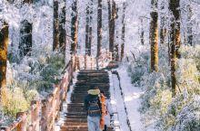 看2021年第一场雪#峨眉山看雪#