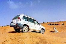 一切都很完美,司机哈桑很热心,非常开心的一次旅行,强烈推荐,让我们的沙漠之旅丰富又有趣!住宿的帐篷超
