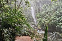拉巴斯瀑布花园  哥斯达黎加圣何塞打卡景点之一,景色优美,动物特别丰富的瀑布公园,游玩以后,感觉瀑布