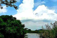 水阔天旷下渚湖 德清下渚湖国家湿地公园 位于浙江省德清县,中心湖区面积约1890亩,是江南最大的天然