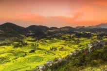 罗平县隶属云南省曲靖市,地处滇东高原向黔西高原过渡的斜坡上。每年2至3月,连片的几十万亩油菜花在罗平