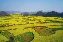 春暖花开的季节,罗平的油菜花盛开正旺,田间的油菜花一遍金黄,形成金色的海洋,享受田园风光,呼吸泥土的