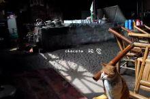 闲聊彭镇老茶馆  双流县彭镇杨柳河边有一座东西两端皆临街的老房子,在这座又陋又旧的老房子里,经营着老
