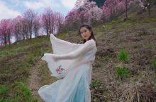 春暖花开,万物复苏。 又到了一年一度的春日赏花的季节,因为YQ就留在川内周边游吧。 给大家推荐一处春
