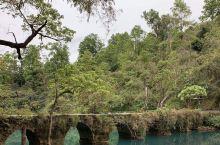 荔波小七孔景区现在已经开放了,景色超美超美的,人不多,满眼绿色,空气清新,纯天然自然风景名胜区,天然