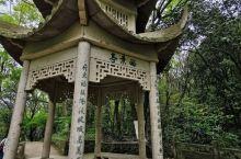 沈家门青龙山公园是沈家门最大的山体公园,山上有普陀区气象检测站,登步岛战役烈士纪念碑,从沈家门东河菜