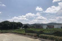 采菊东篱下,悠然见南山……从城市来到这个并不繁华,却意外的更有人情味的地方,好山、好水、好人,所有的