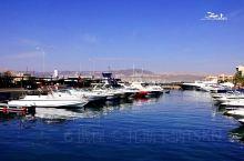 红海和西奈半岛·埃及 如果不是亲临红海,完全想像不到它究竟有多么美。约旦之行,终有机会投入红海怀抱,