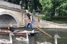 来到剑桥,总要到剑河上Punting一下。 一路听着小鲜肉讲解,一路看看两岸景色及建筑,悠哉悠哉。