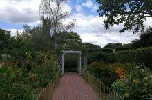 汉密尔顿花园之二