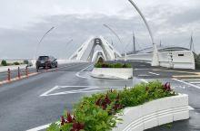 很有创意的丰田大桥和丰田体育场