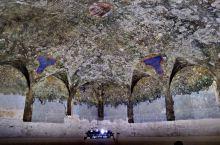 博物馆之二、 达·芬奇绘制的天顶壁画《Sala Delle Asse》。斯福尔扎城堡于1450年由时
