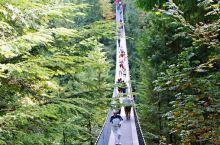 温哥华最古老的观光景点-卡皮拉诺吊桥公园  温哥华景点老二就是卡皮拉诺吊桥了,号称世界老一的450英