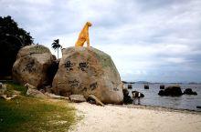 在瓜纳巴拉湾对面有一个叫做戈韦纳多岛的地方。我们今天是乘当地巴士过去的。这里没有什么游客都是本地居民