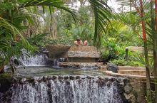 哥斯达黎加圣何塞Tabacon温泉度假村是非常非常著名的景点,来圣何塞旅游不来这个温泉就算是白来了,