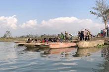 叢乘坐独木舟淌洋在弯延的小河,与鰐魚来场亲近的接触,别老说它是假的都不动,它若有点动静,这友谊的小舟