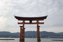 去过美国佛罗里达迪斯尼Epcot的话,在日本馆外,有一处复制的严岛神社水上大鸟居。可见这地方在外国人