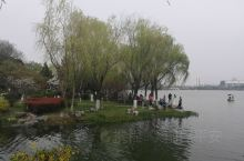 南京玄武湖的风景美不胜收