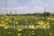 美丽的多伦草原