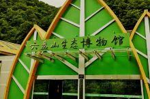 泾源生态博物馆:位于宁夏回族自治区泾源县六盘山国家森林公园内,是六盘山森林公园四大景观之一。博物馆主