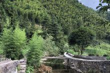 婺源大鄣山,原图拍摄上传,度假避暑圣地。