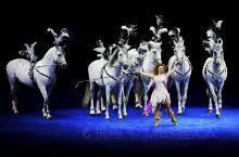 珠海横琴长隆的《龙秀》表演,好看到让我无法言喻~  据说剧情改编自珠海渔女神话故事,从南海龙宫仙女化