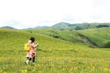 爱在理塘,徒步仙境! 大美四川~  我们漫步在花丛中,忘却一切的烦恼与现实生活中的不快,只是全身心地