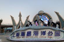 2019/09/29 @上海海昌海洋公园  虽然地点有点偏,环境很适合亲子游玩。这个季节有好多秋游的
