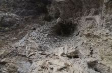 地心谷!可以看看地质变成!