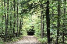 库雅荷加谷国家公园位于克利夫兰,是俄亥俄州的唯一国家公园。酒店早餐后,我们从克利夫兰大学园区洲际酒店