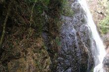 南昆山景点比较分散,可能是由于山体比较大的原因吧。进入南昆山国家森林公园,需要开车行驶半个小时左右的