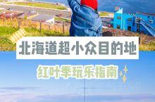 北海道小众赏枫目的地礼文&稚内秋日巡礼 虽说北海道地广人稀,但是红叶季的各个景点也免不了人头攒动的盛