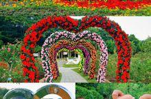 广州‖云台花园‖10元打卡广州最美花园  云台花园的特色  是目前全国最大的中西合璧园林式花园。
