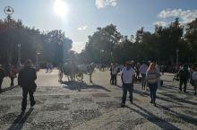 西班牙广场,安达卢西亚塞维利亚市,广场很美