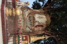 从腾冲到芒市只有一百公里,但是气候习俗信仰完全不同,这里是热带傣族和景颇族地区,信仰小乘佛教,与大乘