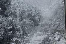 在国人的印象中,提到日本的雪国。第一印象都是北海道或者青森。 其实日本北陆和信越地区的雪质量也很好,