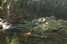 这是钦州八寨沟的自然景观。进到八寨沟景区里面是比较原生态的。这就是山间小溪的景色。对南方这个时候还是
