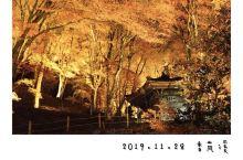如果在枫叶季,你买的机票是往返名古屋,却没有太多时间走升龙道,那么可以考虑一下位于足助的香岚溪~~~