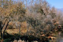 张家口湿地公园